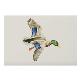 The Southern Sportsman The Southern Sportsman Stationery Mallard Duck