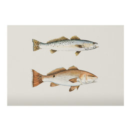 The Southern Sportsman The Southern Sportsman Stationery Trout/Redfish