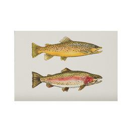 The Southern Sportsman The Southern Sportsman Stationery Rainbow Trout