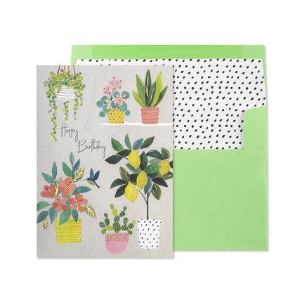 NIQUEA.D NIQUEA.D Lemon Tree and Plants Happy Birthday Card