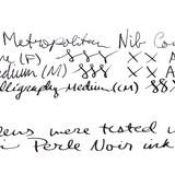 Pilot Pilot Metropolitan Animal Collection Fountain Pen White Tiger