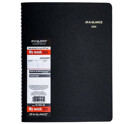 At-A-Glance 2022 70-950 Appointment Book (8.25x11)