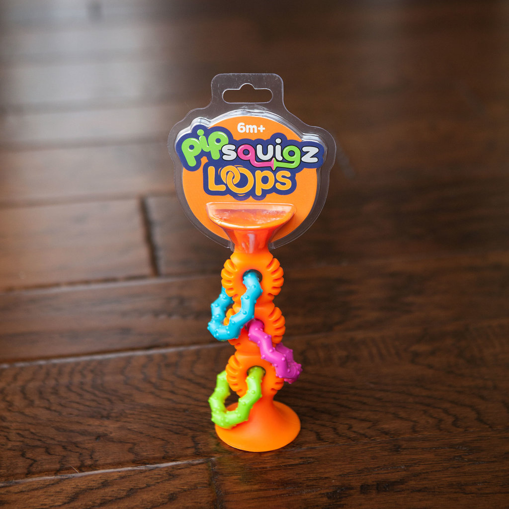 FAT BRAIN TOYS Fat Brain Toys pipSquigz Loops