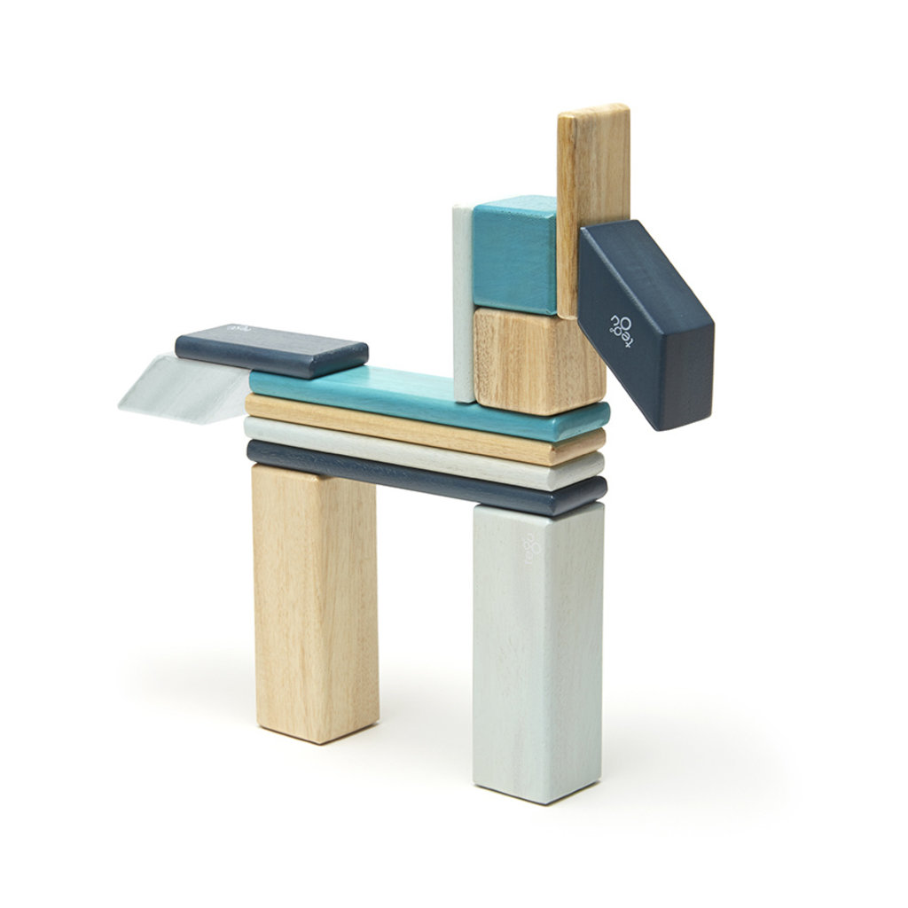 TEGU Tegu 14 Piece Magnetic Wooden Block Set: Blues