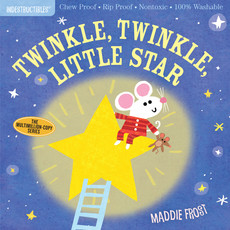 WORKMAN PUBLISHING Indestructibles Book: Song Time