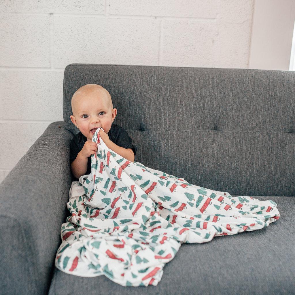 COPPER PEARL Copper Pearl Knit Swaddle Blanket - Nicholas