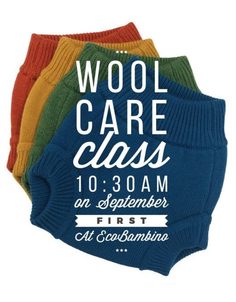 Wool Care Class - September 1st