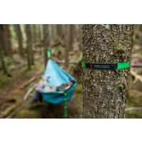 Grand Trunk Trunk Straps Teal