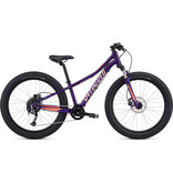 Specialized 2020 RIPROCK COMP 24""