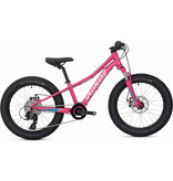 """Specialized 2020 RIPROCK 20"""""""