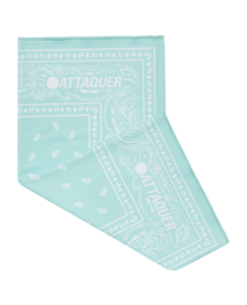 Neck Warmer Atlantic Paisley OSFM