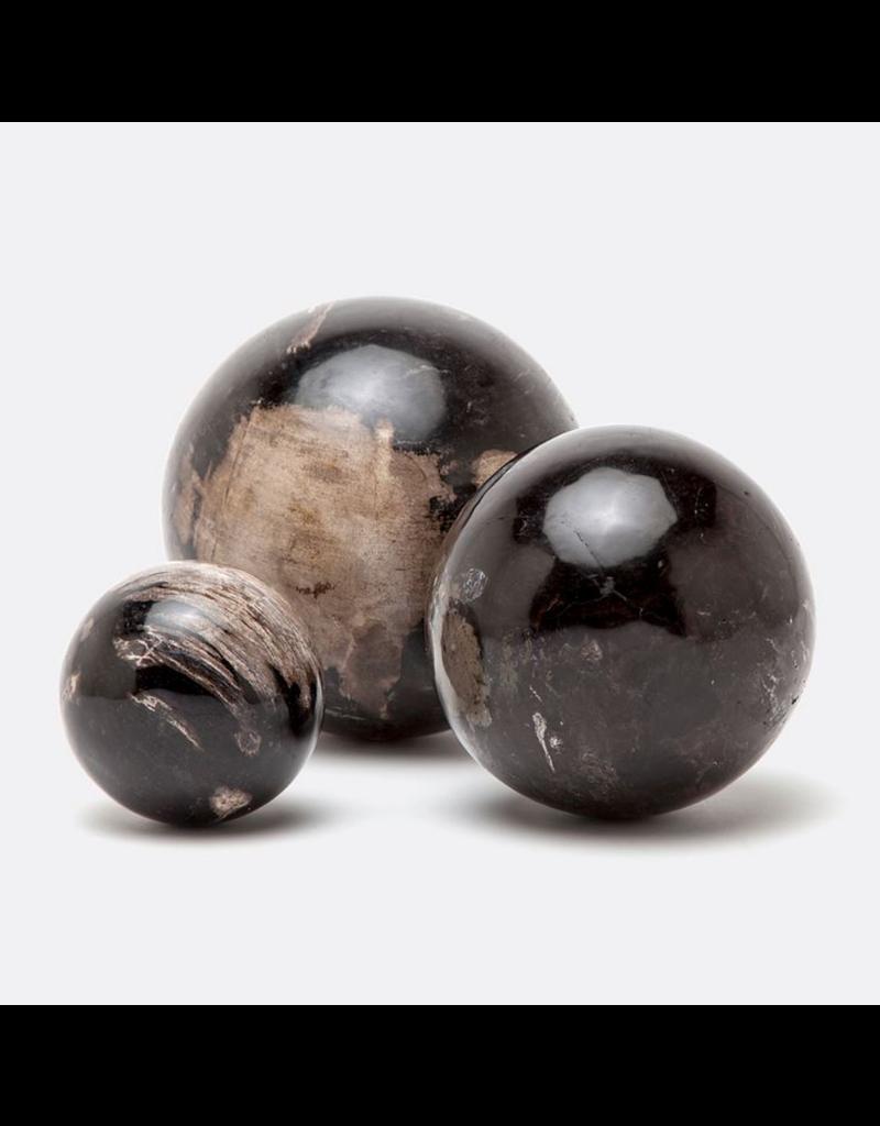 Bram - dark petrified wood