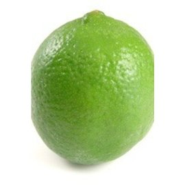 Lime 3 Pack