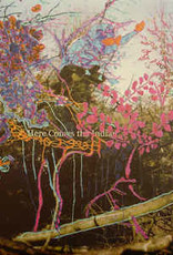 Animal Collective/Here Comes The Indian