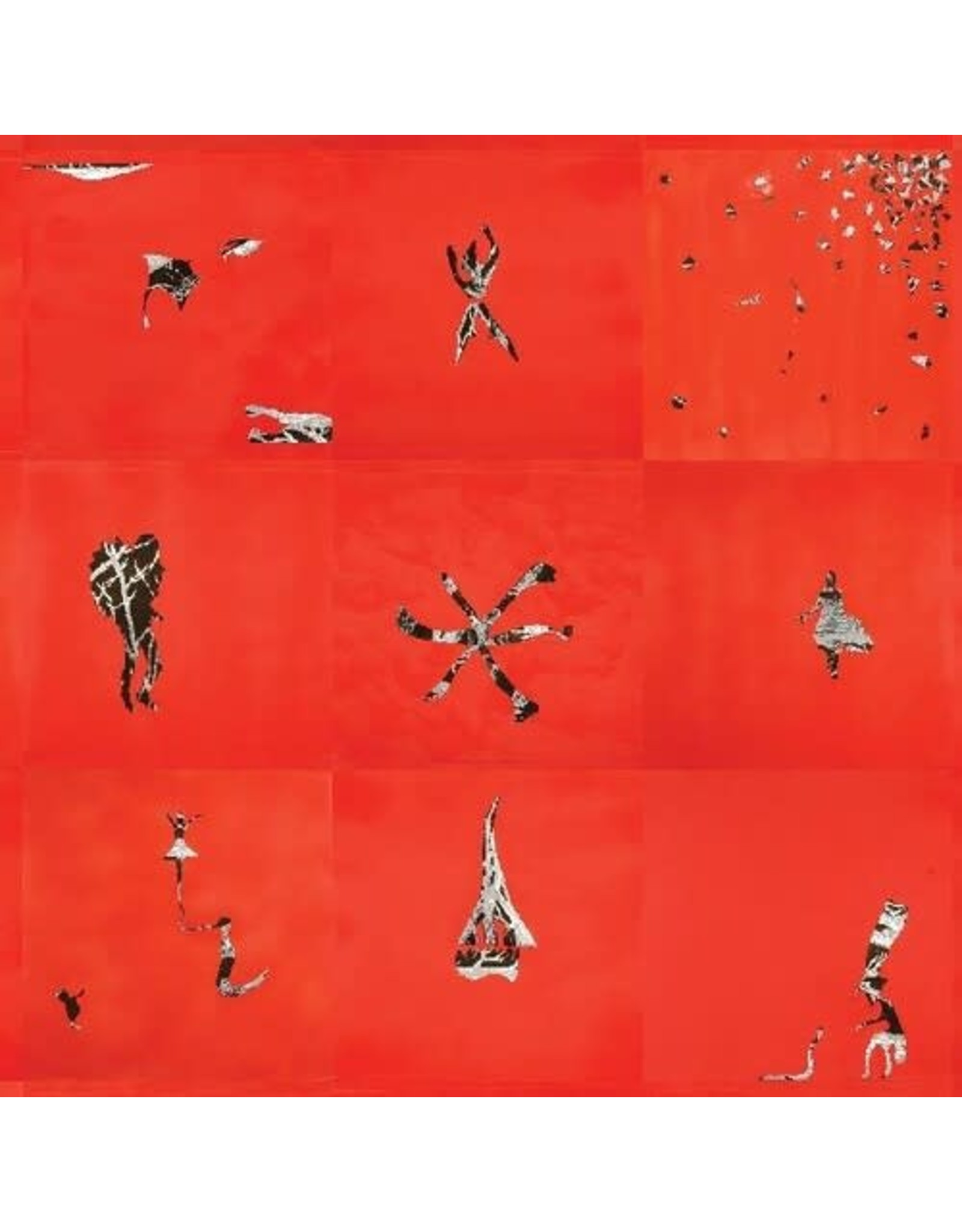 Animal Collective / Hollinndagain
