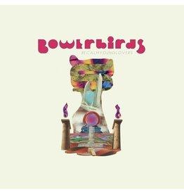 Bowerbirds / Becalmyounglovers