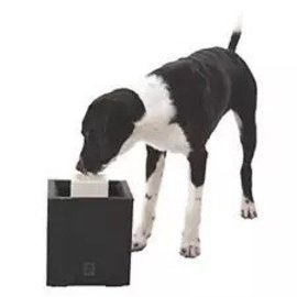 Dogit Dogit Alfresco Dog Fountain