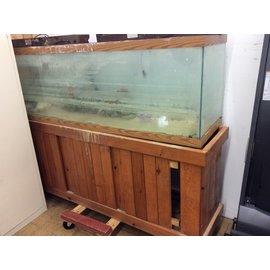 125 gal. Fish tank (8/8/19)