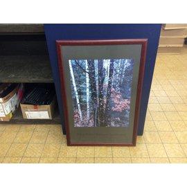 Framed print (11/21/19)