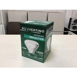 SLI Lighting 120W Flood (10/16/2020)