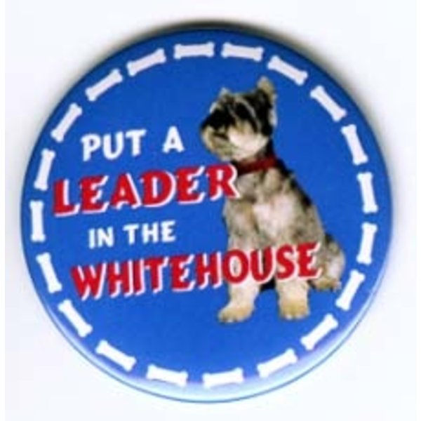 Put a LEADER in the White House