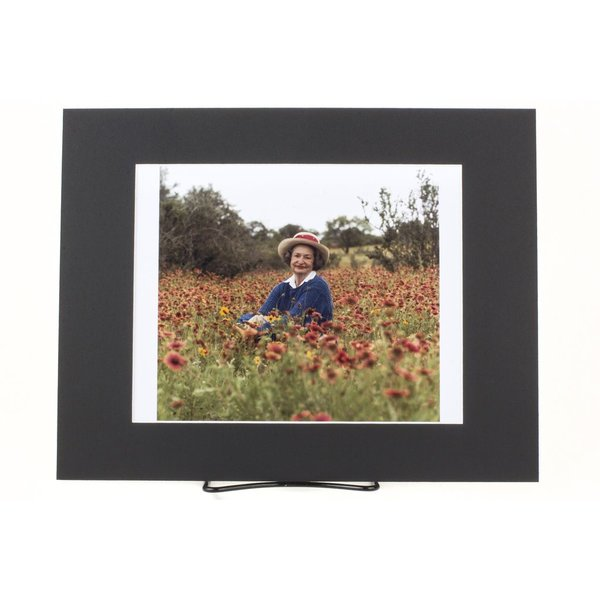 sale-11x14 MATTED PHOTO LBJ/LADY BIRD IN WILDFLOWERS