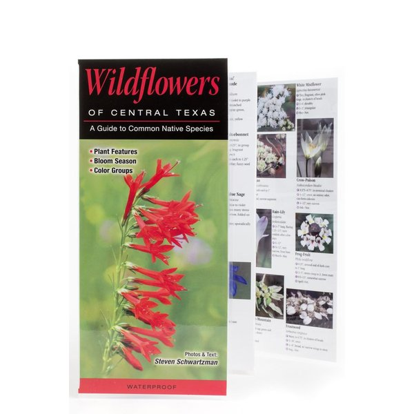 Lady Bird Wildflowers of Central Texas Guide PB