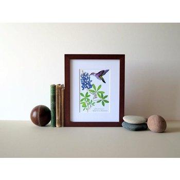 Austin & Texas Bluebonnet With Large Hummingbird 8x10