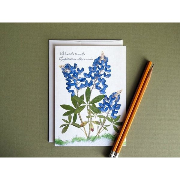 Austin & Texas Bluebonnet Trio Card