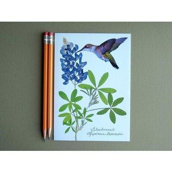 Austin & Texas BLUEBONNETS W/LG HUMMINGBIRD CARD
