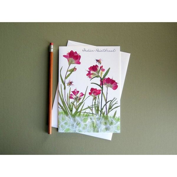 Austin & Texas INDIAN PAINTBRUSH W/BEE CARD