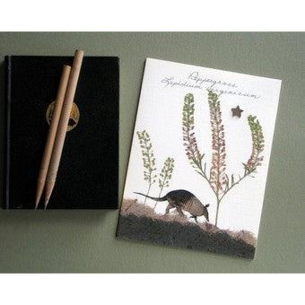 Austin & Texas Peppergrass 'Dillo Card