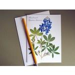 Austin & Texas Single Bluebonnet Card