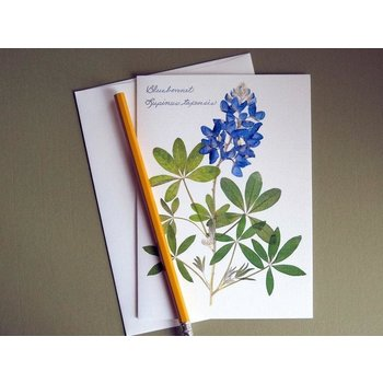 Austin & Texas Single Bluebonnet Card