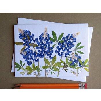 Austin & Texas BLUEBONNETS CARD horiz