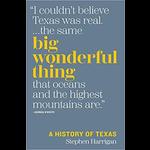 Austin & Texas Big Wonderful Thing by Stephen Harrigan HB