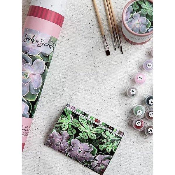 Lady Bird sale-Such A Succulent 16x20 Paint by Number Kit