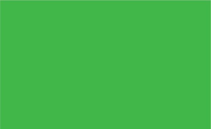 Siser Easy PSV Permanent Bright Green* 12 X 12 Sheet