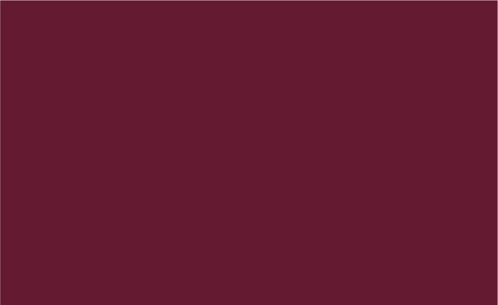 Siser Easy PSV Permanent Merlot* 12 X 12 Sheet