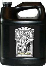 NECTAR FOR THE GODS Athena's Aminas Gallon