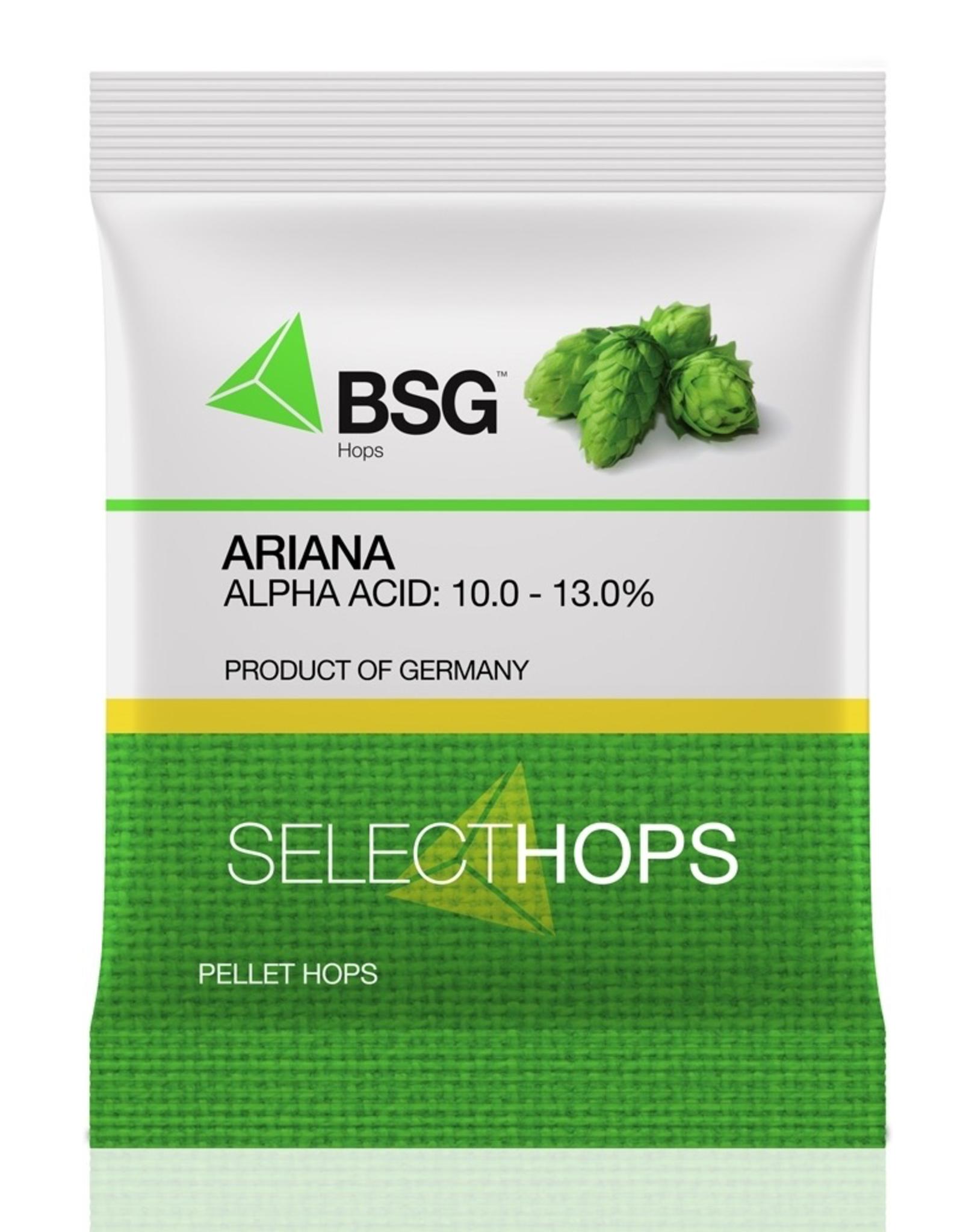 HOPUNION Ariana (GR) Hop Pellets 1 oz