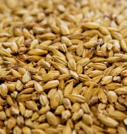 Dingemans The intensive germination and mild kilning of Dingemans Aromatic will add a very strong malt aroma and a deep reddish color. Aromatic malt also improves flavor stability. This malt is rather low in diastatic power, therefore it can make up to 30% of a gri