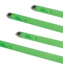 SPECTRALUX SPECTRALUX 4' GREEN T-5 TUBE