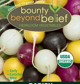 BBB SEEDS Radish, Organic Carnival Radish Blend