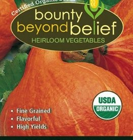 BBB SEEDS Squash, Winter, Organic Red Kuri