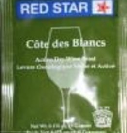 RED STAR COTE DES BLANC - EPERNAY 2 RED STAR ACTIVE WINE YEAST