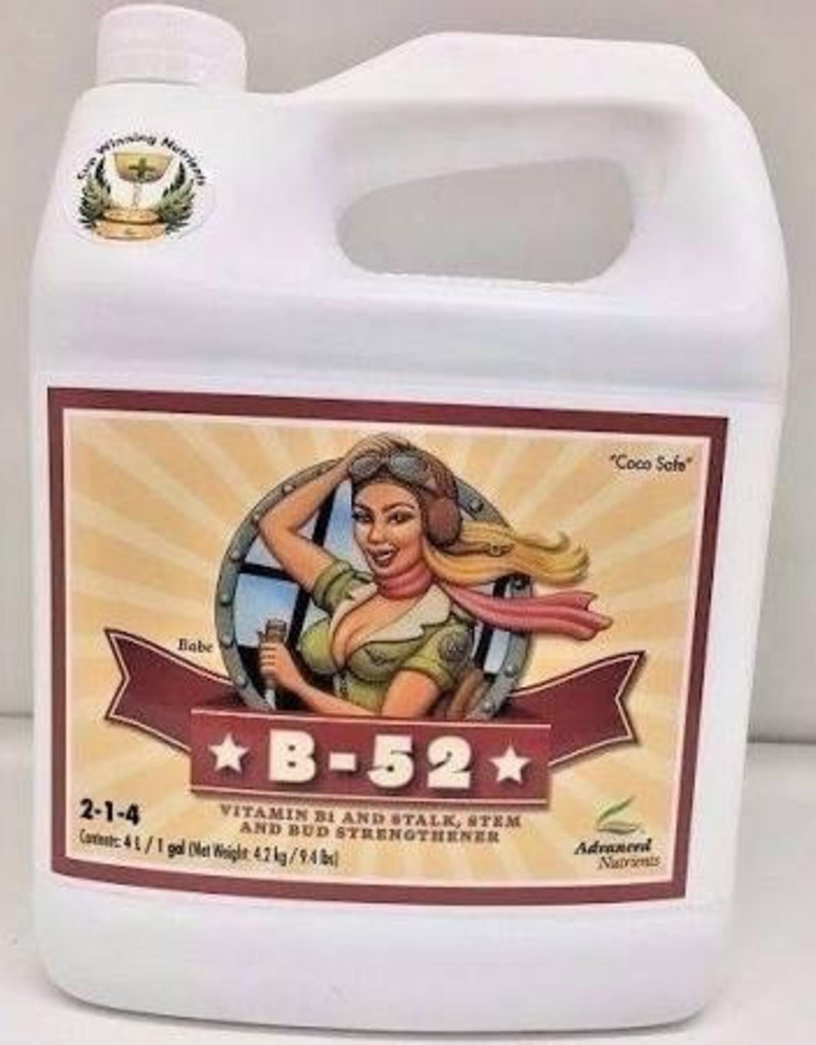 ADVANCED NUTRIENTS B-52 1 GAL