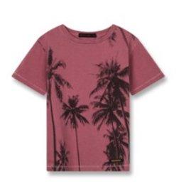 FINGER IN THE NOSE E19 DALTON Plum Palms - Boy Knitted Short Sleeves T-Shirt