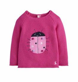 Pink Ladybug Sweater