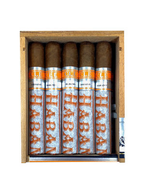 CLE CLE Habano 5x50 - single